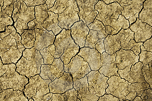 Close Up On Dry Land Stock Image - Image: 5224531