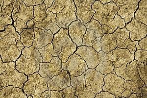Close Up On Dry Land Stock Image - Image: 5224531