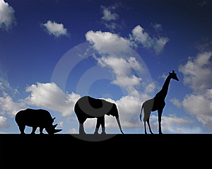 Walking Animals Stock Photo - Image: 5254850