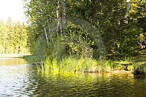 Lake And Nature Royalty Free Stock Image - Image: 5274596