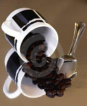 Espresso Bean Stock Image - Image: 536281