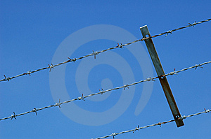Barbed Wire Royalty Free Stock Photo - Image: 5305035
