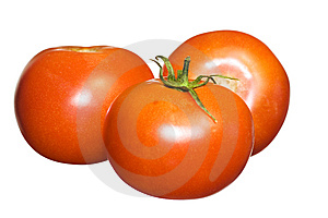 Tomatoes On White Stock Images - Image: 5318124