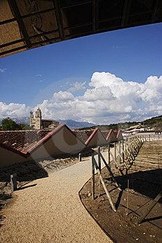 Rioja Stock Photos - Image: 5331803