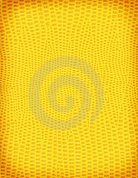 Yellow Lizard Skin Stock Photo - Image: 5343160