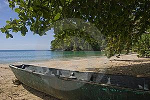 Praia Das Caraíbas Fotografia de Stock Royalty Free - Imagem: 5367807