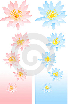 Lily Decor Royalty Free Stock Photo - Image: 5394935