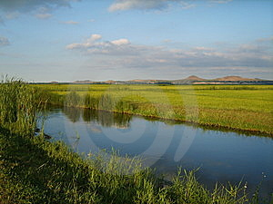 River And Rice Paddy Stock Images - Image: 5397734