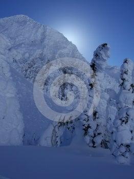 Winters Wonder Stock Photography - Image: 549402