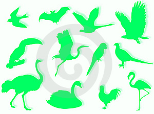 Birds Silhouette Royalty Free Stock Photos - Image: 5404308