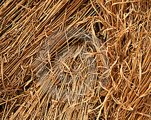 Straw Background Detail Royalty Free Stock Photos - Image: 5431988