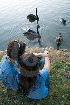Couple Sitting by a Pond  - Vertical Royalty Free Stock Photo
