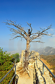 St. Hilarion Fortress Royalty Free Stock Images - Image: 5441759