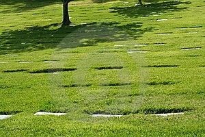 Sombra Del árbol En Cementerio Foto de archivo libre de regalías - Imagen: 5449605