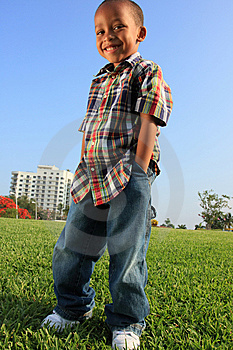 Young Boy Posing on the Grass Free Stock Photography