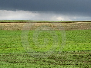 Green Field Stock Image - Image: 5492221