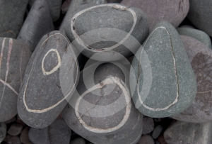 Pebbles Stock Images - Image: 557834