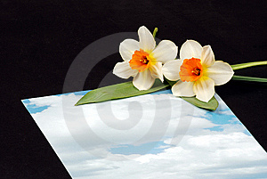 Sky Letter With Flowers Royalty Free Stock Image - Image: 5514936