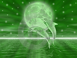 Dolphins Stock Image - Image: 5520171