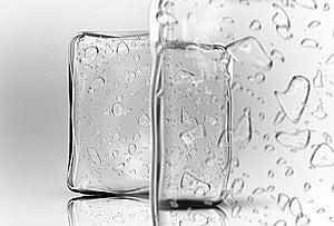 Ice Cubes Stock Image - Image: 5521451