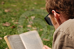 Reading In The Park Stock Images - Image: 5532814