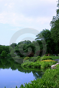 Bridge In A Park Stock Photo - Image: 5548460