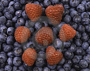 Raspberries On Blueberries Royalty Free Stock Images - Image: 5577759