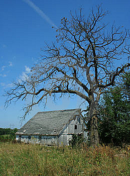 Spooky Old Barn Royalty Free Stock Photos - Image: 5579528