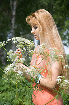 Beauty Girl In Summer Forest Royalty Free Stock Image - Image: 5584066