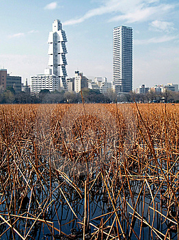 The City On The Pond (Ueno Par Stock Images - Image: 564004