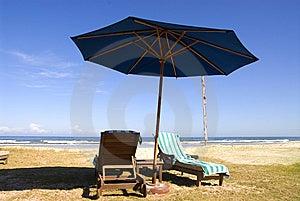 Beach Chairs of beach resort Free Stock Photo