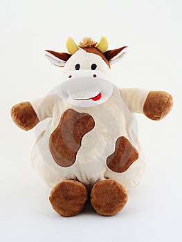 Crazy Fat Cow On White Back Stock Photography - Image: 5624522