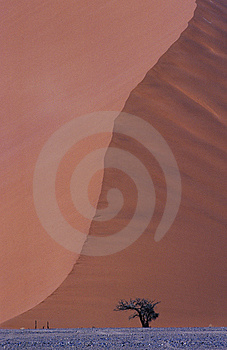 Sussusvlei Dune Royalty Free Stock Photography - Image: 5633087