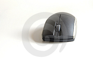 Mouse On White Royalty Free Stock Photos - Image: 5639028