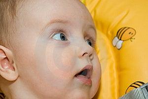 Little Baby Girl Looking Stock Image - Image: 5652971