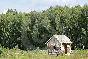 Birch Small House Royalty Free Stock Photos - Image: 5657098
