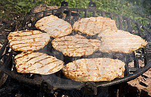 Barbecue Stock Images - Image: 5682164