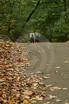 Walking In The Park Royalty Free Stock Photos - Image: 5687088
