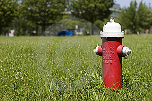 Fire Hydrant In A Green Field Stock Image - Image: 5690241