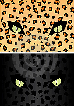 Skin And Eye Of The Jaguar Stock Photography - Image: 5705392