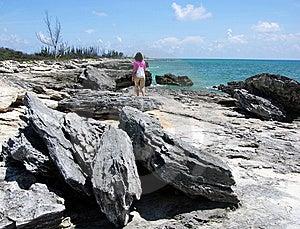 On A Hostile Beach Stock Photos - Image: 5719023