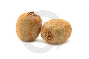 Twin kiwi Stock Image