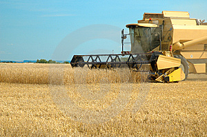 Machine Harvesting The Corn Field Royalty Free Stock Photo - Image: 5729505