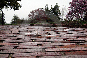 Brick Walkway Stock Photos - Image: 5758743