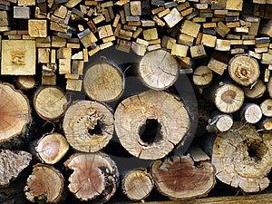 Logs Cut Stock Photo - Image: 5759800
