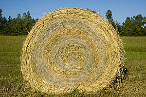 Hay Bale Roll Blue Sky Royalty Free Stock Photos - Image: 5769458