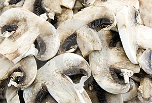 Mushrooms Royalty Free Stock Photography - Image: 5785177