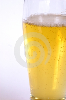 Glass of Beer 2 Royalty Free Stock Image