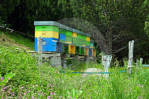 Beehives Stock Photography - Image: 5812002