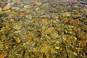 Mountain Stream Stock Photography - Image: 5813522